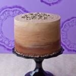 Chocolate and Vanilla Honey Cheesecake Layer Cake 2