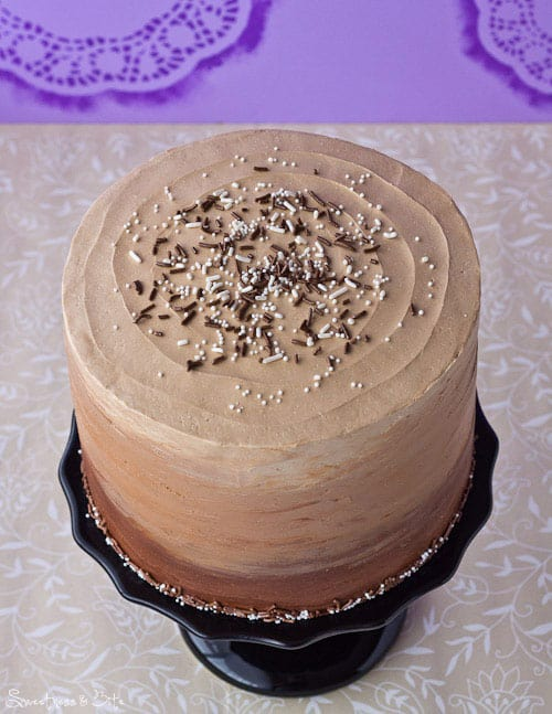Chocolate and Vanilla Honey Cheesecake Layer Cake Sprinkly Top