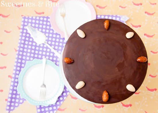 Gluten Free Toasted Almond Chocolate Cake ~ Sweetness & Bite