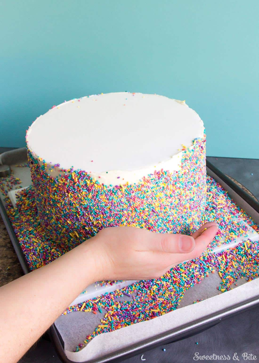 Sprinkle Cake Tutorial Sweetness Amp Bite