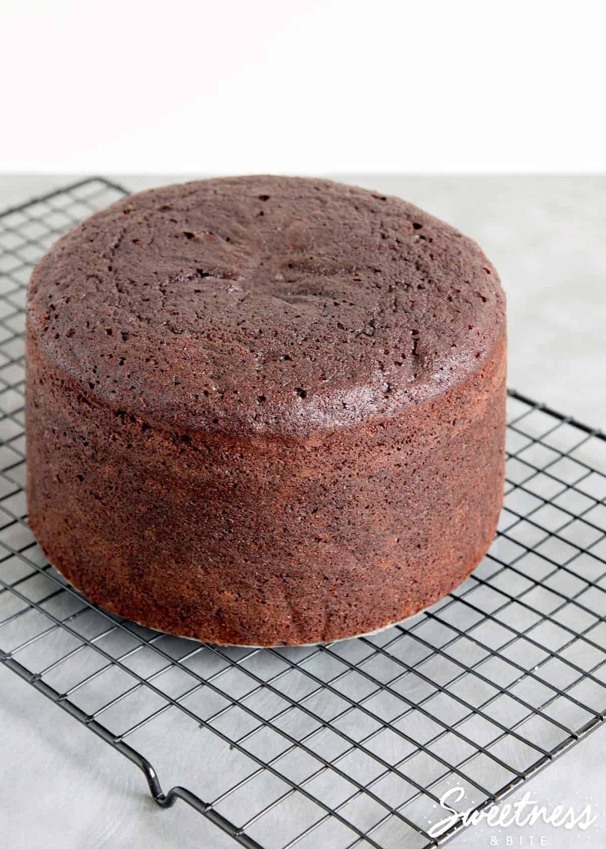 how-to-check-your-cake-is-cooked-perfectly-featured-image